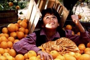 palestina arance